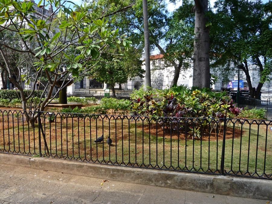 urlaub-2009-kuba-rundreise-077