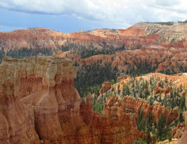 Bryce Canyon National Park - USA Westküsten Rundreise - Roadtrip - Travel - Fashionladyloves by Tamara Wagner - Travel Blog