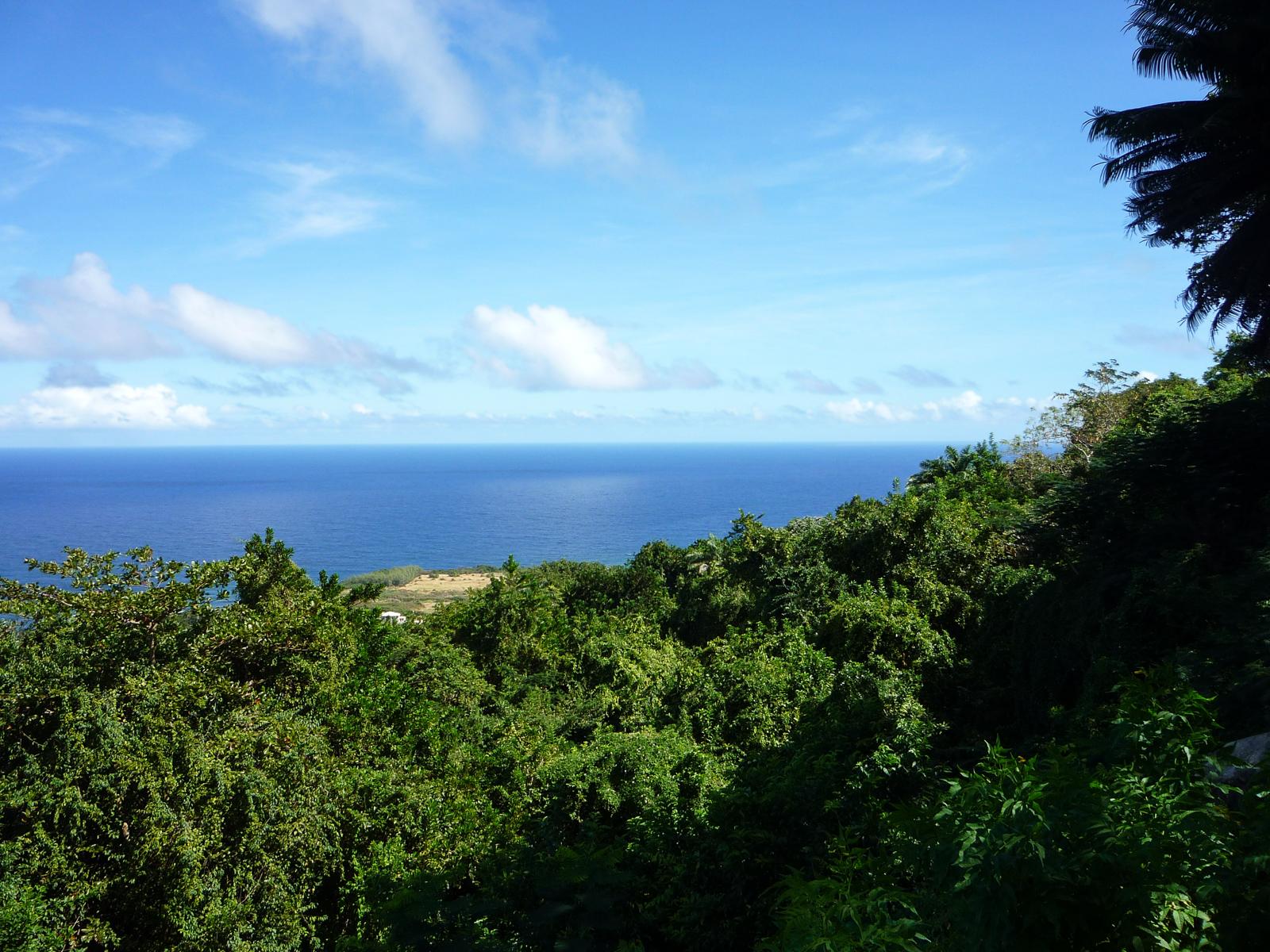 Barbados Travel Guide - Kreuzfahrt in der Karibik - Karibik Urlaub - Insel in der Karibik - kleine Antillen - Urlaub in der Karibik - Karibik Kreuzfahrt mit Mein Schiff - Traumreise - unvergessliche Reise - Tipps und Wissenswertes - Fashionladyloves by Tamara Wagner - Travel Blog - Reiseblogger